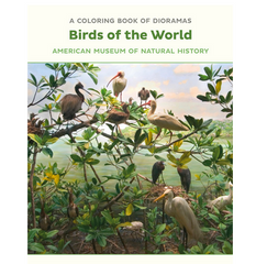 Birds of the World Dioramas Colouring Book