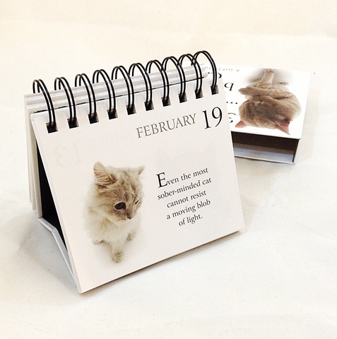 365 Days .. with my Bossy Cat (A Giftbook)