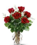 Red Roses: Half Dozen in a Vase (Preorder for Valentine's)