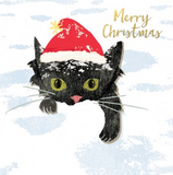 Merry Christmas Cats Cards