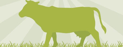 Why Grass-Fed Beef Is Better for You (Infographic)