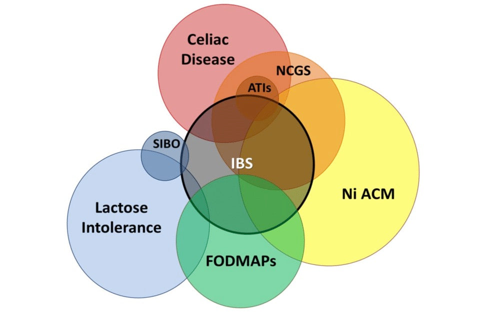 clinical overlap between IBS and IBS like disorders