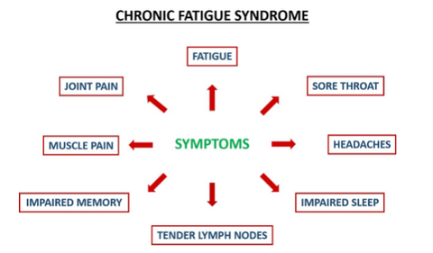 Chronic Fatigue Syndrome and the gut