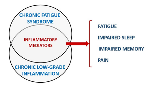 Chronic Fatigue Syndrome and Gut Inflammation
