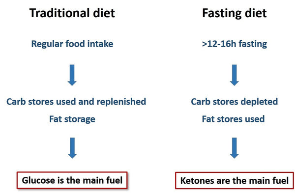 traditional vs intermittent fasting diet