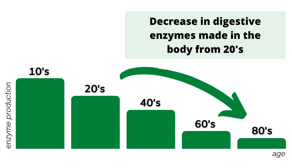 digestive enzyme production with age