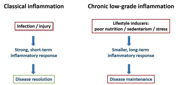 Chronic Low Grade Inflammation A Common Ground For