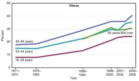 Low carb high fat diets were not popular when obesity epidemic happened