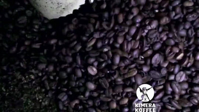 Kimera Nootropics Infused Koffee
