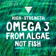 Buy Vegan Omega 3