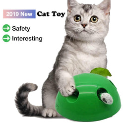 POP N PLAY Hide n' Seek Cat Toy