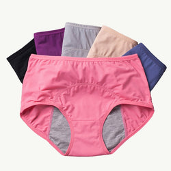 LEAK-PROOF PERIOD PANTIES (3 PCS)