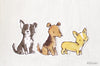 puppies set C (Border Collie, Airedale Terrier, Corgi)