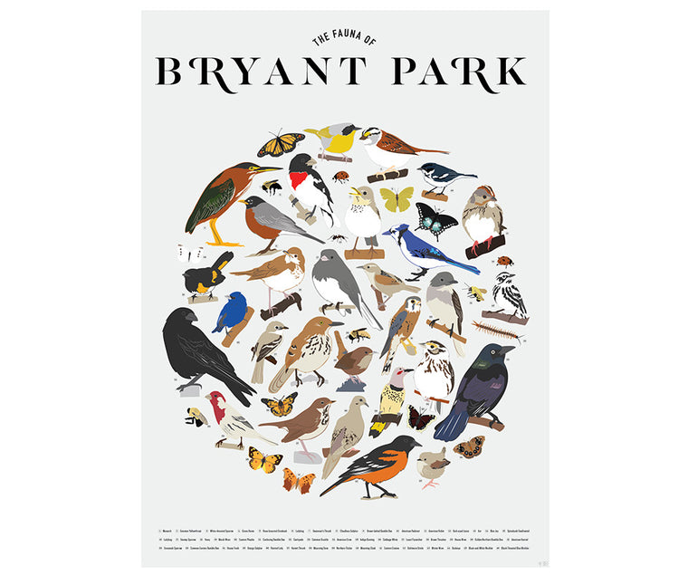 Fauna of Bryant Park Poster