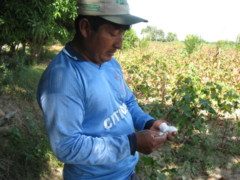 Silvania Georgia Kirkpatrick Rodolfo on his organic cotton farm