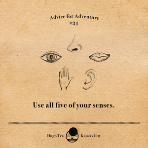 Advice for Adventure #31 - Use all five of your senses.