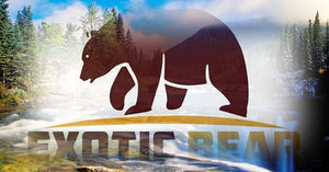 Exotic Bear Fashion Boutique