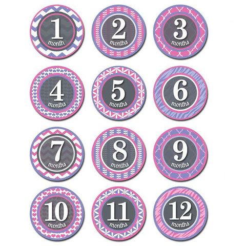 Monthly Patterned Princess Milestone Stickers