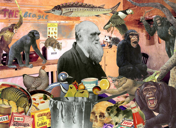 Darwin kitchen animals science history nelson de la nuez humor art museum moha