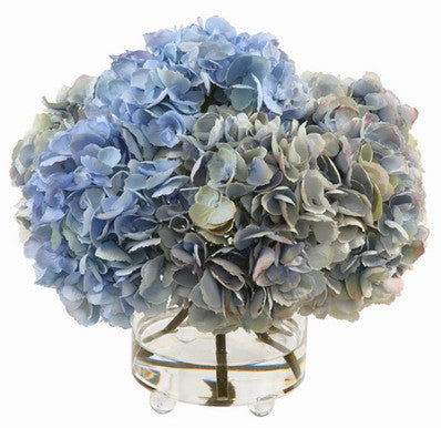 HYDRANGEA IN CYLINDER GLASS 14.5""