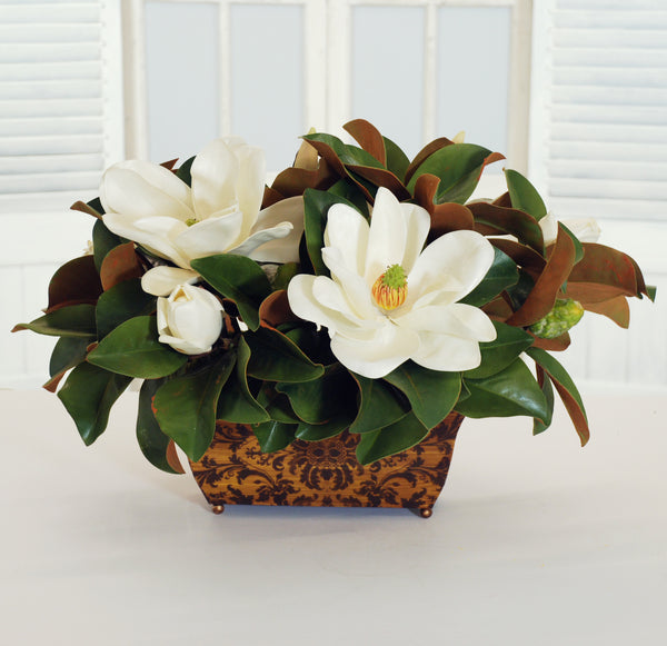 MAGNOLIAS IN RECTANGULAR PLANTER