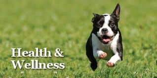 Health & Wellness - Complete Care for your Pets
