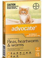 Advocate Cat - Advocate Small Cat (Orange) 0-4Kg