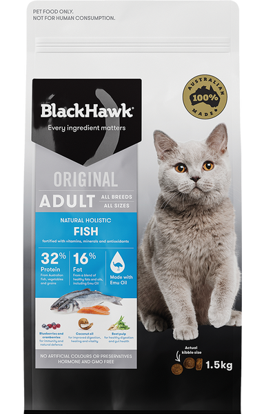 BlackHawk Cat - Original Adult Fish