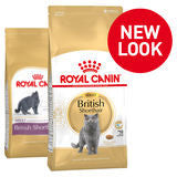 Royal Canin Cat - Royal Canin BRITISH SHORTHAIR, 1-10 years