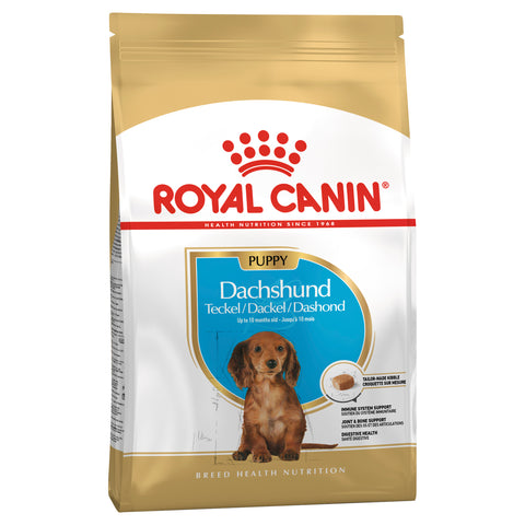 Royal Canin Dog - Royal Canin DACHSHUND PUPPY, 0-10 months