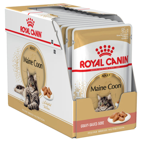 Royal Canin Cat - Royal Canin MAINE COON WET FOOD