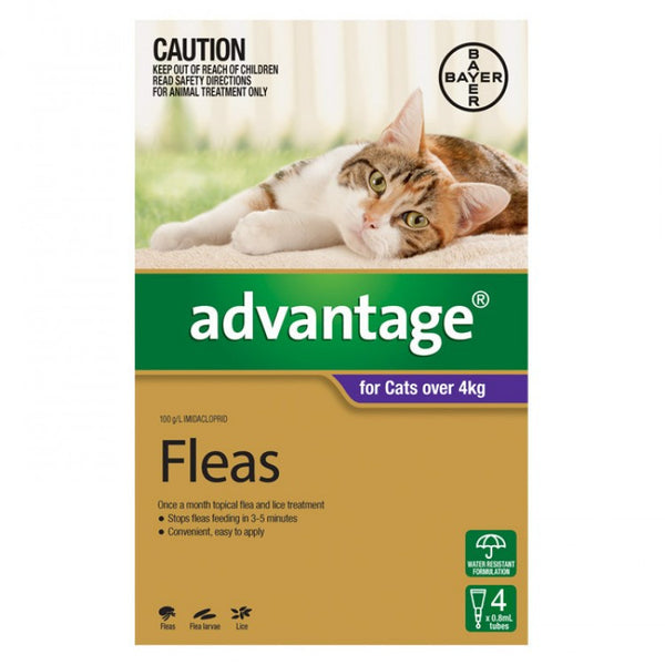 Advantage Cat - Advantage Large Cats - (Purple) Over 4Kg
