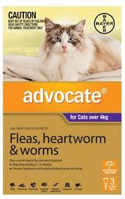 Advocate Cat - Advocate Large Cat (Purple) Over 4Kg