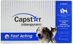 Capstar Cat - Capstar 11mg - Cats & Small Dogs (Blue)