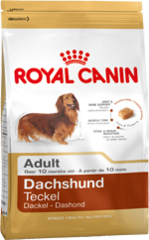 Royal Canin Dog - Royal Canin DACHSHUND ADULT,10 months +