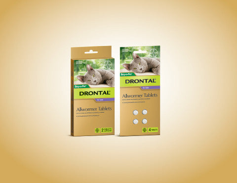 Drontal Cat - Drontal Allwormer Cat 0-4Kg