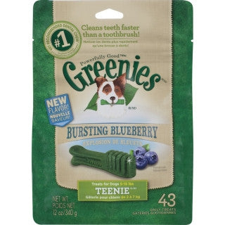 Greenies Blueberry Pack Teenie