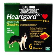 Heartgard Plus - Heartgard Plus Medium Dogs (Green) 12-22kg