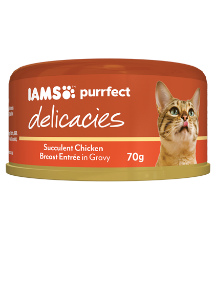 IAMS Cat -  Adult Purrfect Delicacies Cans, Chicken Breast Entree in Gravy