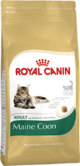 Royal Canin Cat - Royal Canin MAINE COON 31