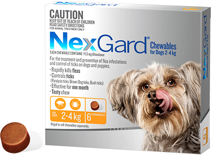 Nexgard Dog - Nexgard Chews Small Dogs 2-4kg (YELLOW)
