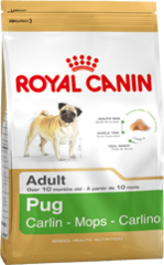 Royal Canin Dog - Royal Canin PUG, 10 months +