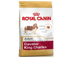 Royal Canin Dog - Royal Canin CAVALIER KING CHARLES ADULT