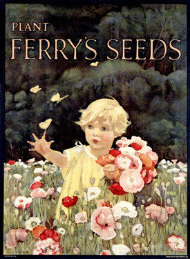 Ferry Seed Garden Child Fine Art Print