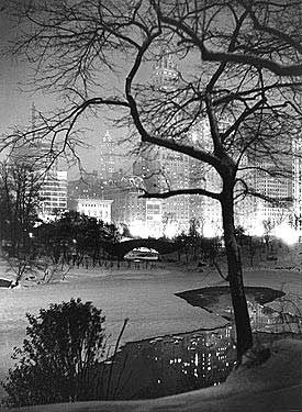 Winter at Night New York Central Park Fine Art Print
