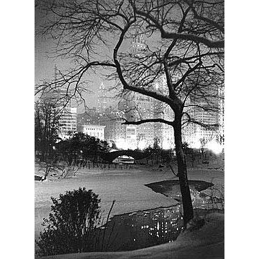Winter At Night New York Central Park Photo Wood Sign