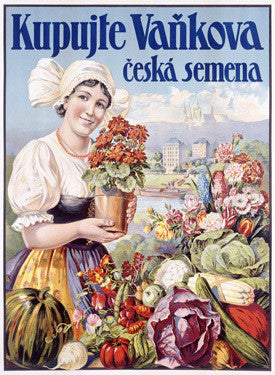 Czech Flower and Produce Festival Fine Art Print