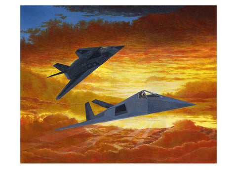 F117 Night Hawk by Douglas Castleman Fine Art Print