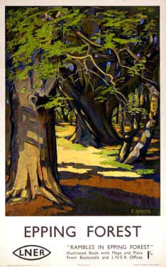 Epping Forest by E. Harris Fine Art Print