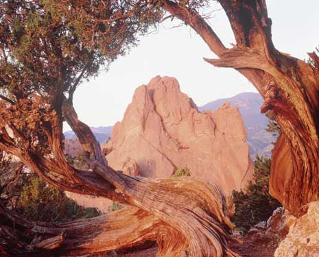 Garden of Gods, CO by Dennis Flaherty Fine Art Print